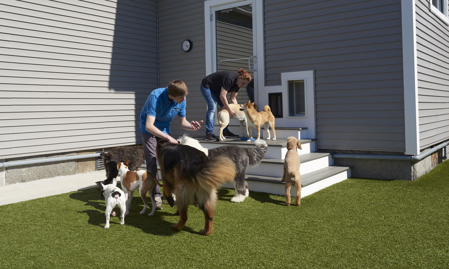 Outdoor play at Bark City