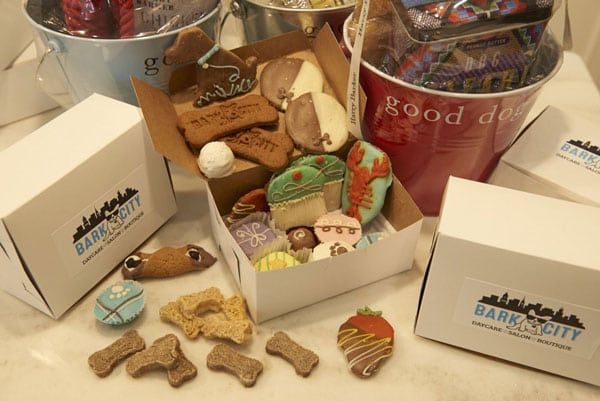 Dog treats at Bark City