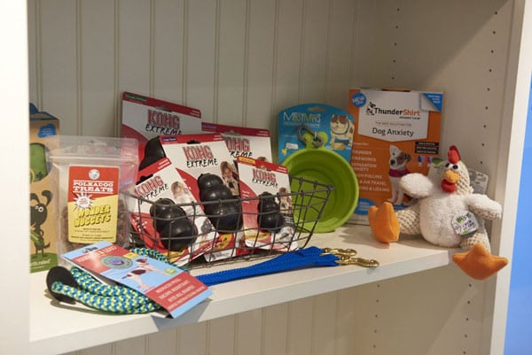 Curated toys at Bark City Doggie Daycare
